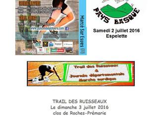 Course des crêtes/Au nom de la Louère/Trail des Ruisseaux - 2/3 juillet 2016