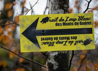 Trail du loup blanc - Guéret - 14 et 15/12/2019