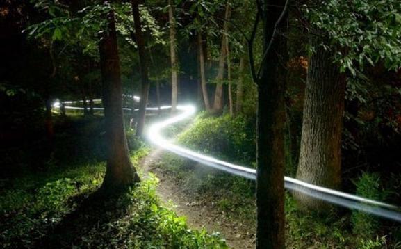 trail nocturne.jpg