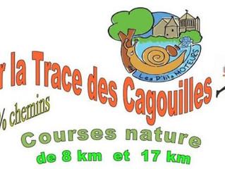 Sur la trace des cagouilles à Nouaillé - 01/11/2015