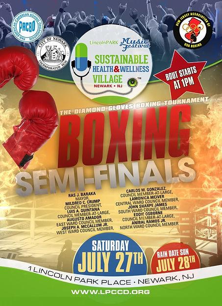 2019 LPMF SHWV Boxing on Sat Poster.jpg