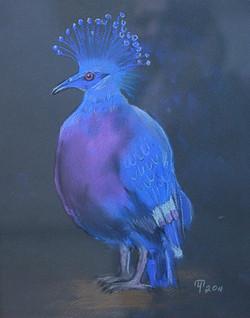 Синяя птица / Татьяна Черникова