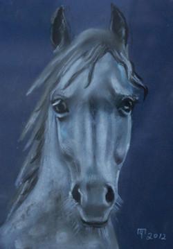Грустная лошадь / Татьяна Черникова