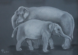 Слониха со слоненком / Татьяна Черни