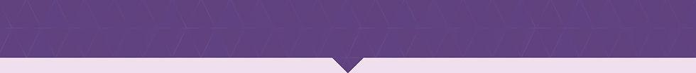 META_Website_SERVICES Bar_Purple_02.jpg