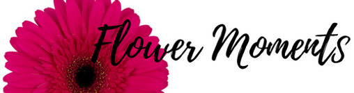 Flower Moments Logo