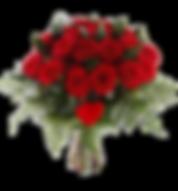 imageedit_1_6297865942.png