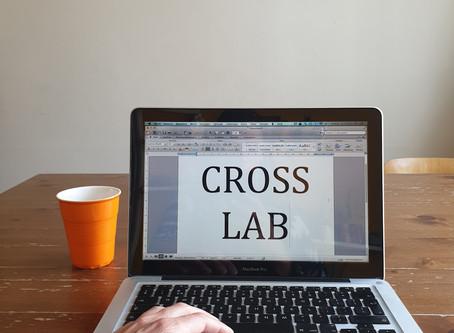 #32 Crosslab