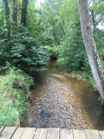 Mattawoman Creek Mitigation Site