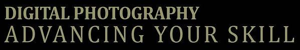 Advancing Your Skill logo.jpg