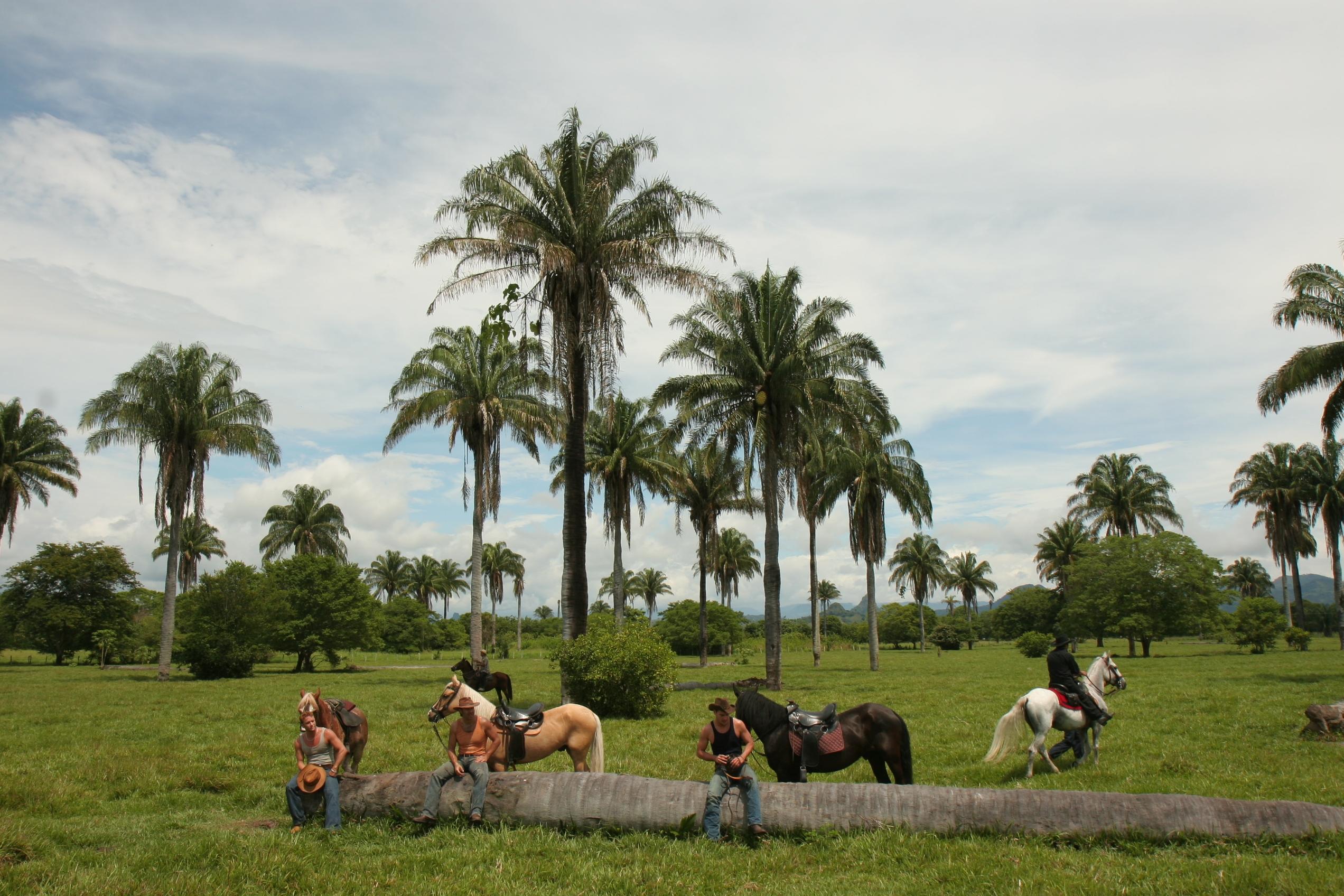 Potreros y peones-Locación la Dorada