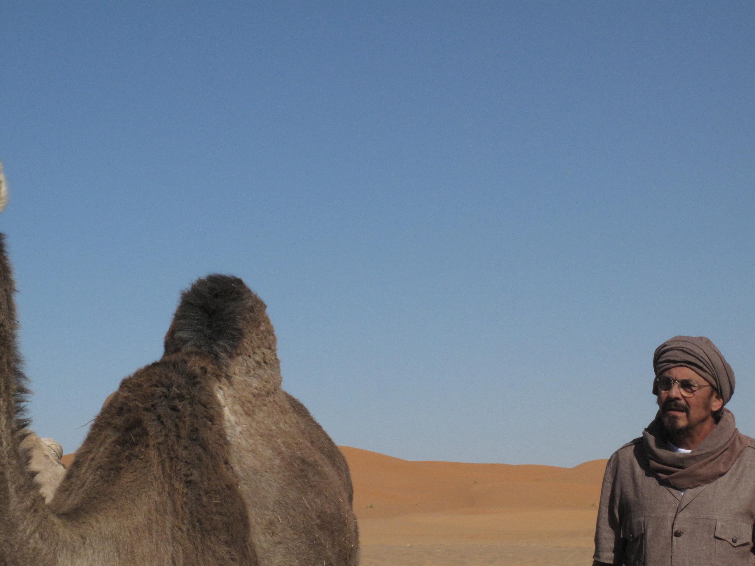 Ali compra camellos-Sahara