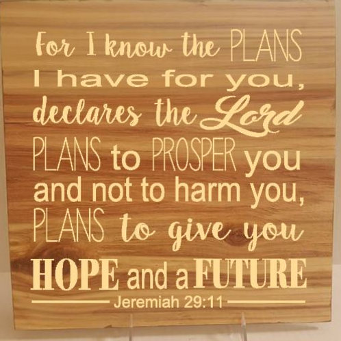 For I know the Plans I have Jer. 29:11