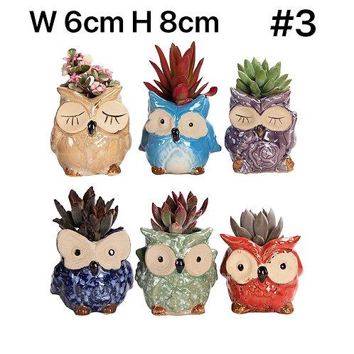 Cute Owls Succulent Pots Selections 6pc #3