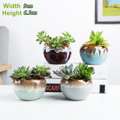 4pcs Cactus Succulent Pots Ceramic Flower Plant pots Gloss Glaze 02