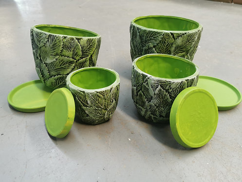 Set of 4 Succulent Pots Selections Green with base plates