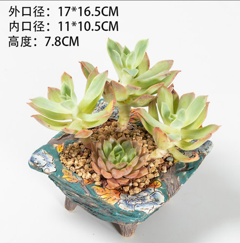 Hand Painted Square Flower Cacti Succulent Pots Green 17cm width x 7.8cm height