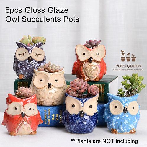 Selection of 6pcs Cacti Succulent Pottery Gloss Ceramic Flower Plant pots Owls