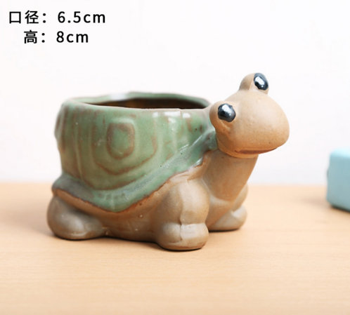 Animal Collection - Ceramic Succulents Pots Green Turtle Med 6.5x8cm