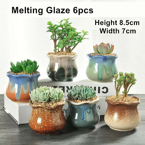 Melting Gloss Glaze 6pcs Cactus Succulent Pots Ceramic Flower Plant pots