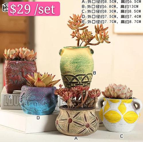 Multi Shape Selection of 5 Succulents/Cactus Pots 7-13cm Height