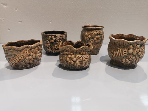 Set of 5 3D Hand Painted Ceramic Succulents Pots Mix Collections