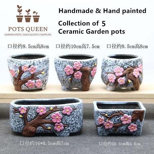 Selection of 5 Cactus Succulent Pots Ceramic Flower Plant Garden pots Blue Pink
