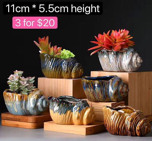Small Scone Succulent Pots Selections 6pcs