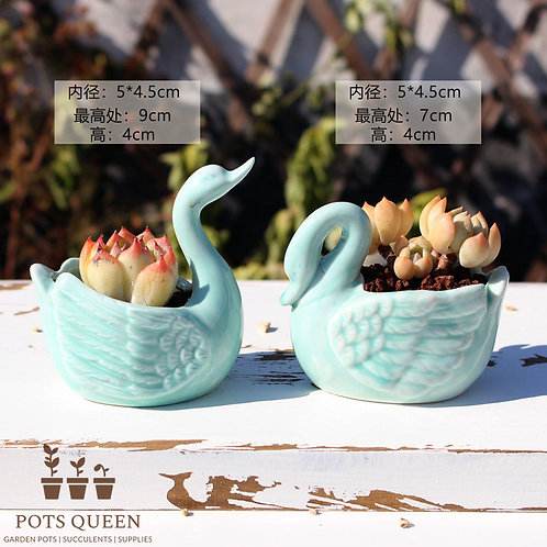 Pair Aqua Swan Gloss Glaze Clay Cactus Succulent Pots Ceramic Flower Plant Pots