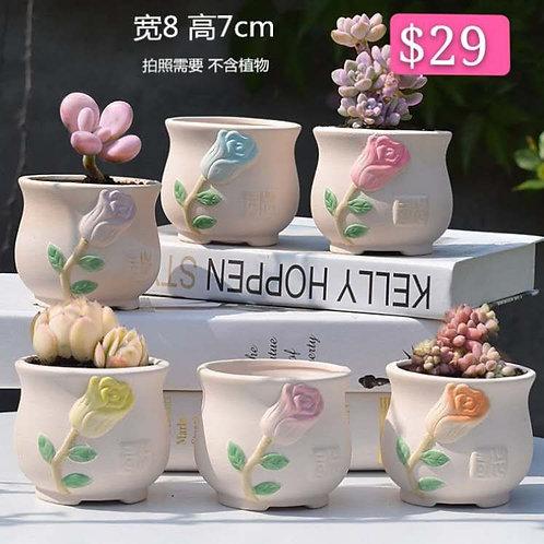 Set of 6 Matt Flower pots Selection small 7x8cm