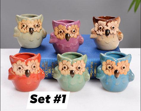Cute Owls Succulent Pots Selections 6pc