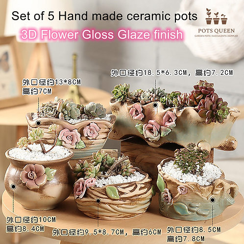 Set of 5 3D Flower Hand made Cacti Succulents Pots Gloss finish Tan Brown color