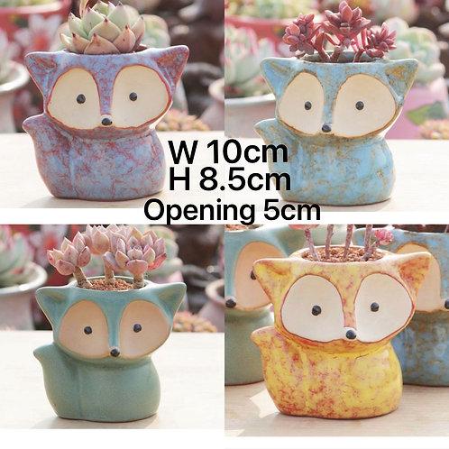 Cute Foxes Succulent Pots Selections 4pcs