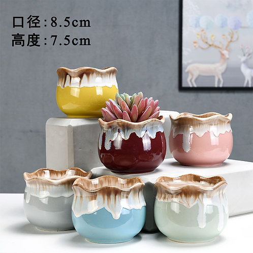 Set of 6 Gloss Succulent pots Selection small 7.5x8.5cm