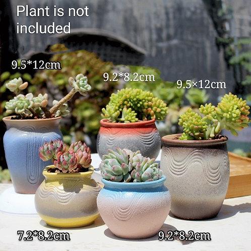 Matt Multi-color Collection 5pcs Cactus Succulent Pots Ceramic Flower Plant pots