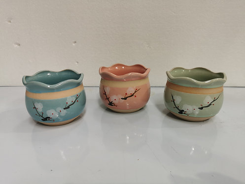 Set of 3 Hand Painted Ceramic Succulents Pots Small Curved top