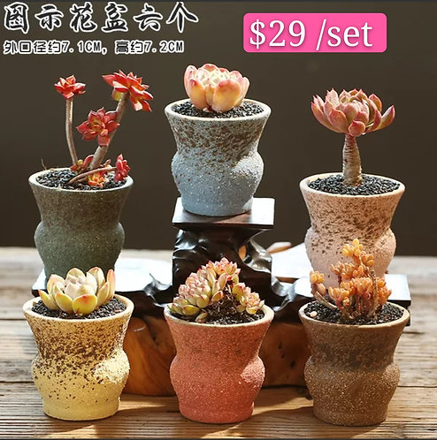 Classic set of 6 Ceramic Succulents Pots 7.2cm height