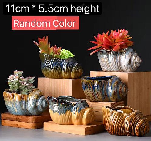 6pcs Cactus Succulents Pots Gloss Glaze Clay Scone