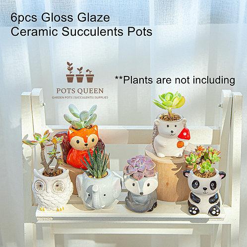 Selection of 6pcs Cacti Succulent Pottery Ceramic Flower Plant pots Animals