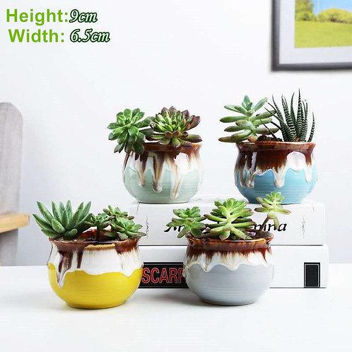 4pcs Cactus Succulent Pots Ceramic Flower Plant pots Gloss Glaze 01