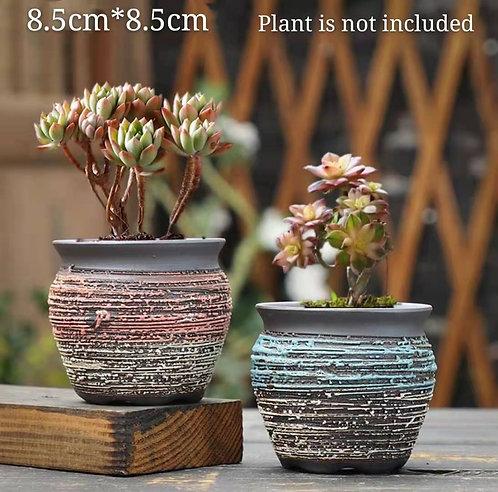 Pair Small Premium Purple Clay Succulents flower pots Matt 8.5cm