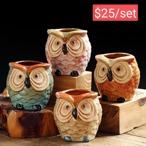 Realistic Owls Succulent Pots Selections 4pcs 9cm height