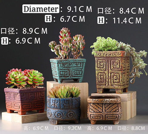 Set of 5 Cactus Succulents Pots Matt Ceramic Multi-color Ancient Oracle