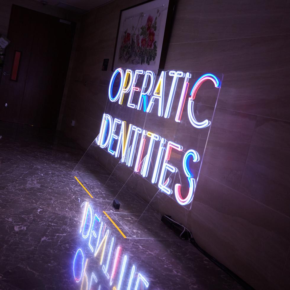 20190911_Operatic Identities_4888.jpg