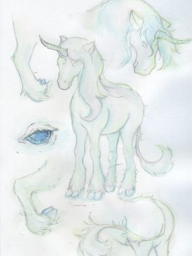 young unicorn.jpeg