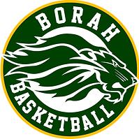 borah bball-logo_orig.png