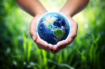earth in hands - environment concept  -