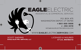 eagelelectric.PNG