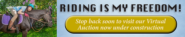 Auction Banners-1.png