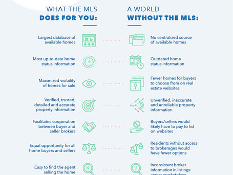 The MLS System in ACTION